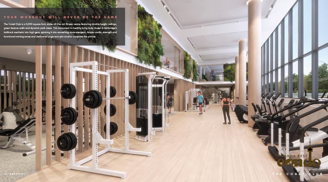 QA Gym